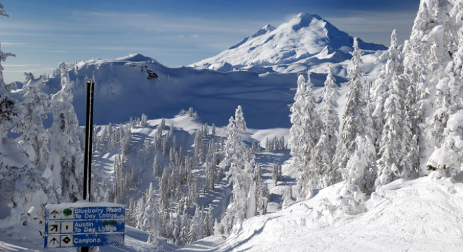 Mount Baker Ski Resort 660X360