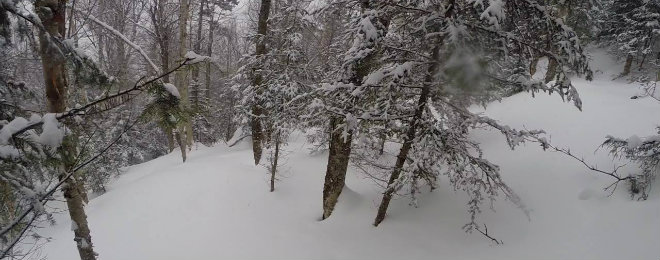 Mad River Glen Backcountry 660X260