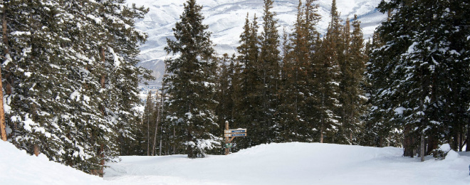 Beaver Creek Beginner Skiing 660X260